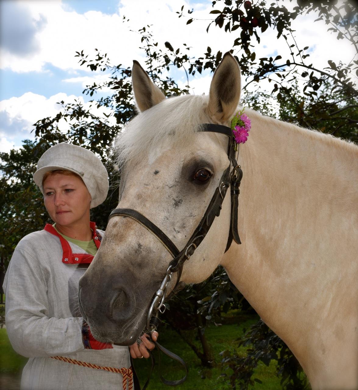 дом с конями на коломенской фото полотенцесушителя