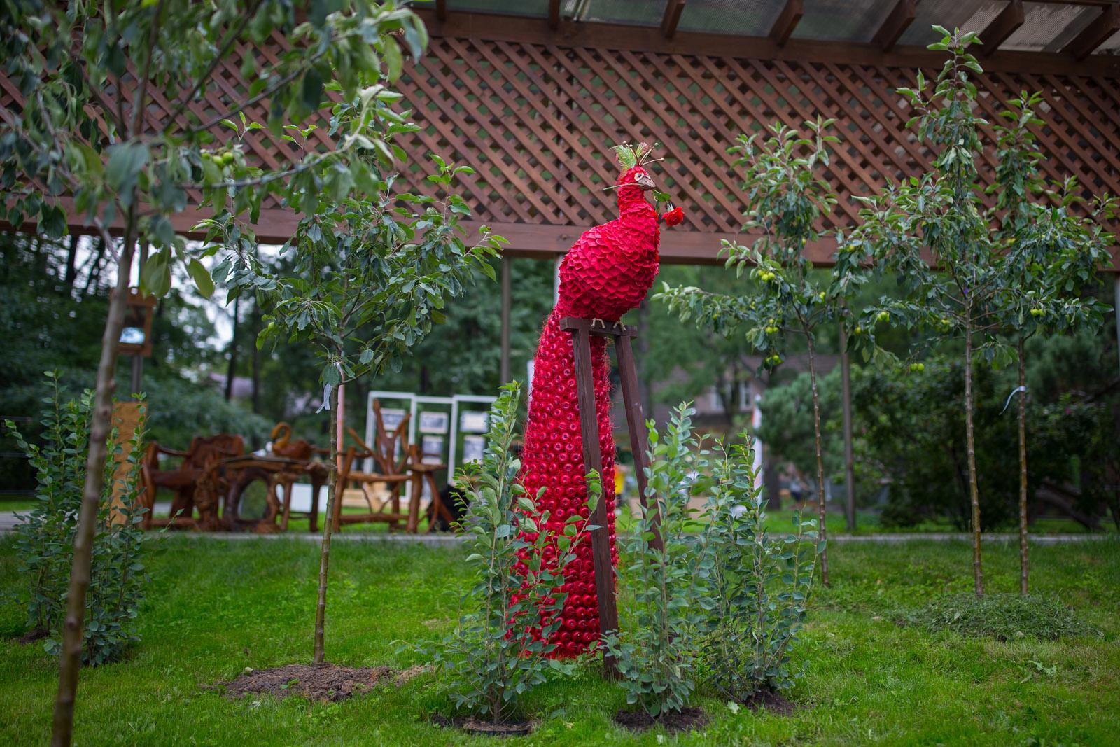 Сады и люди конкурс дворы для людей
